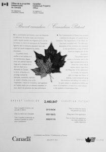 ren Canada patent 01